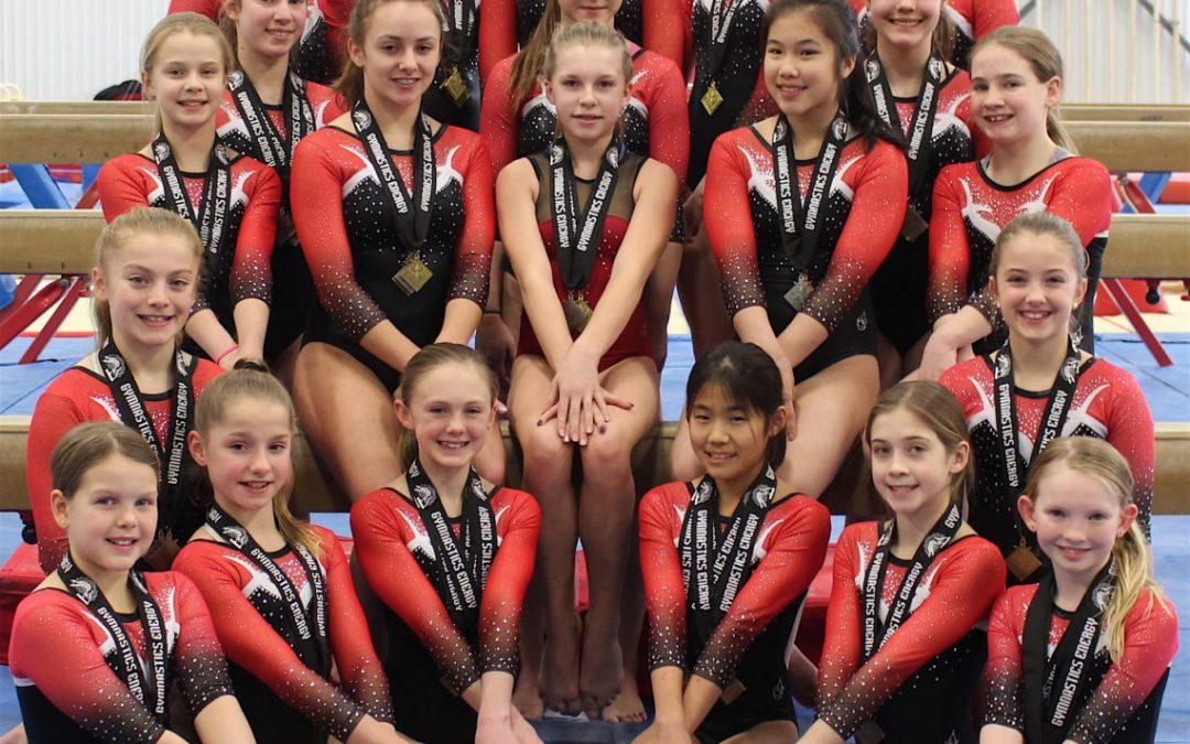 Area sports: Gymnastics Energy provincial qualifiers